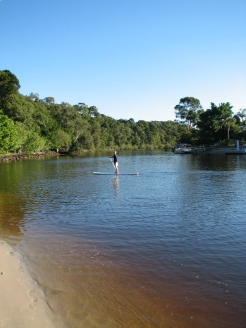 Stand Up Paddling in Noosa Waterway