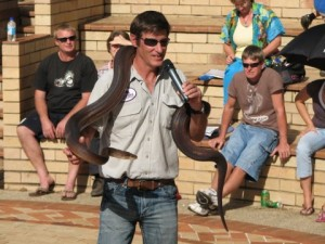 Martin Fingland of Geckoes Wildlife with a Shy Snake