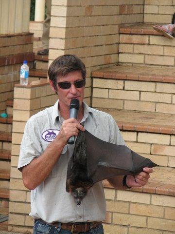Martin and a Fruit Bat