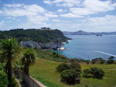 Scenic Coromandel walk in New Zealand
