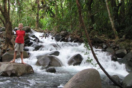 Los Cusingos Bird Sanctuary Costa Rica