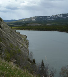Yukon River Loop Trail returning on the south bank on the Tramway Trail