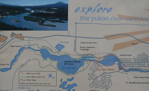 yukon river loop hike whitehorse to miles canyon