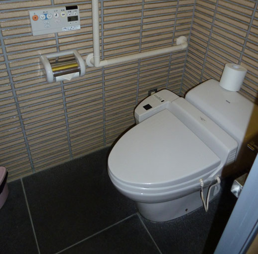 funny travel story japanese toilets cubicle