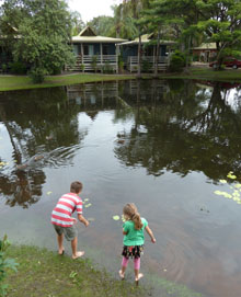 Hervey Bay accommodaton - Sanctuary Lakes Fauna Retreat