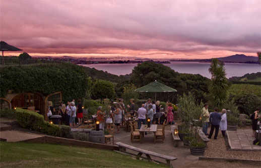 best travel destination waiheke island, new zealand