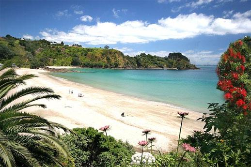 best travel destination, waiheke island new zealand palm beach