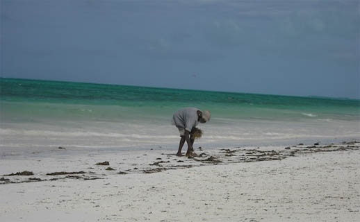 zanzibar-travel-tips-kids-beach