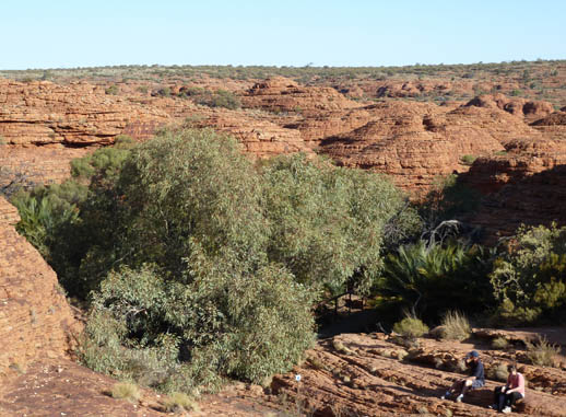 kings canyon walk central australia