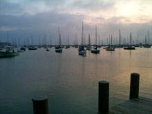 things to see and do in Martha's Vineyard