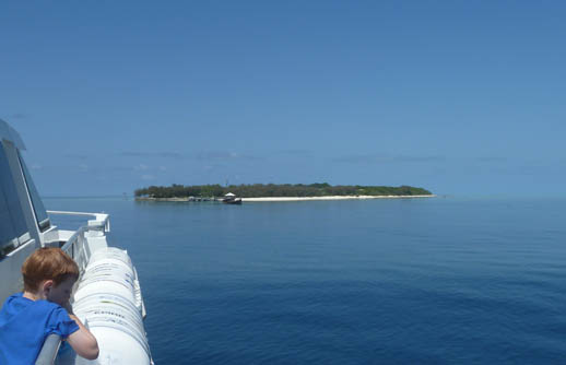 heron island arriving