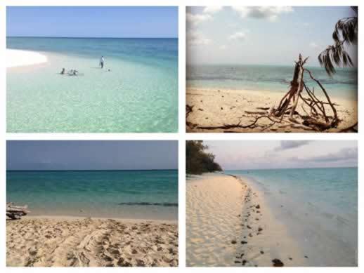 Heron Island beaches