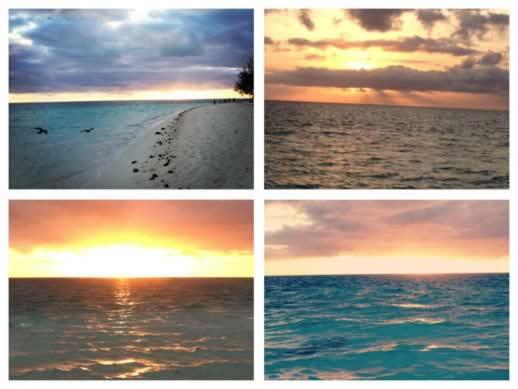 heron island sunrises