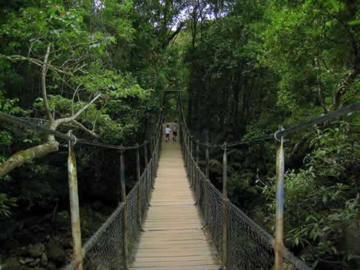 travel photo post: Mossman Gorge in Daintree National Park