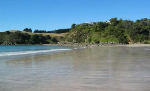 Palm beach waiheke island new zealand travel photo