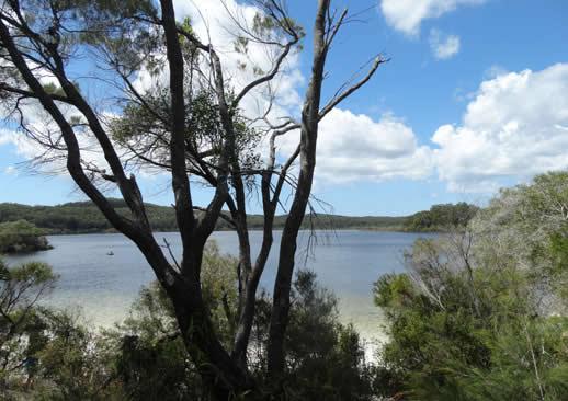 fraser island lake mackenzie