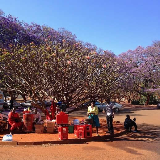 Zimbabwe Travel Tips and Mythis