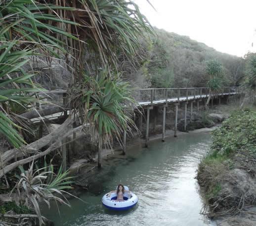 Fraser island family holiday floating at eli creek