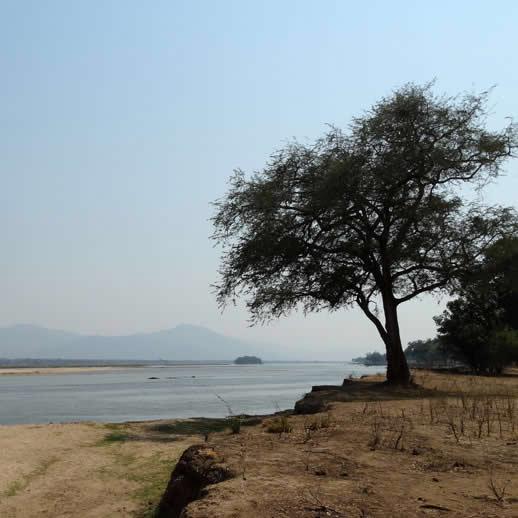 zambezi square