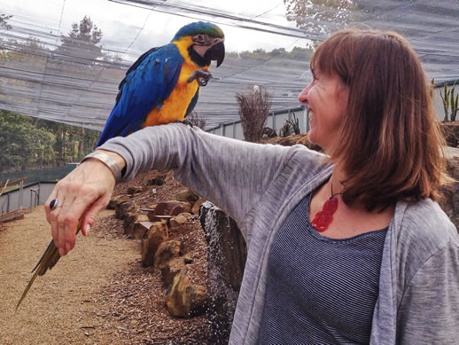 maleny botanic garden review annabel candy macaw