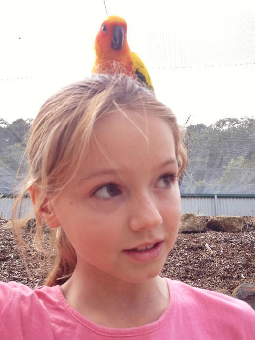 maleny botanic garden review kiara bird