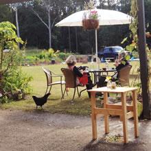 Sunspace Cafe, Doonan, Noosa locals guide