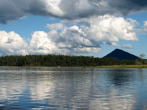 noosa botanic gardens lake
