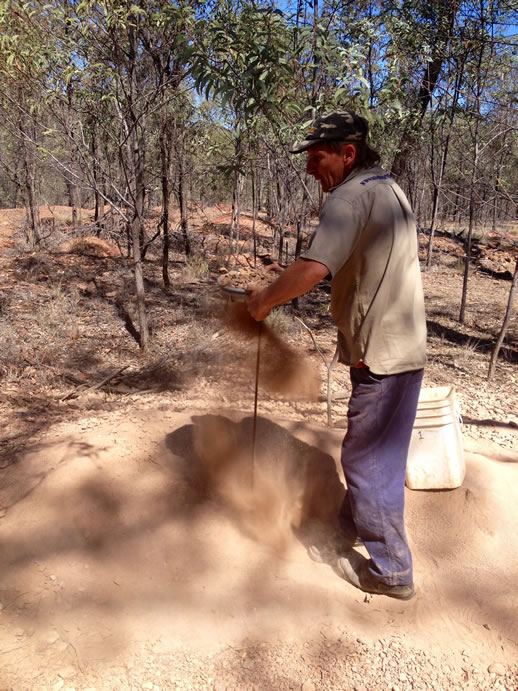 rubyvale michael fossicking sieve