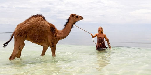 tracks movie camels ocean