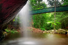 Best Waterfalls and Swimming Holes on the Sunshine Coast