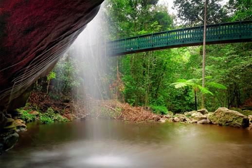 sunshine coast waterfalls buderim
