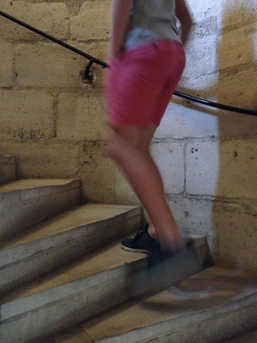 notredame steps