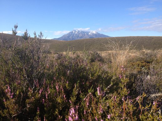 tongariro alpine crossing 1