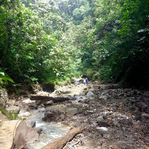 savo-island-volcano-hike