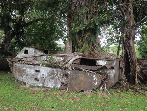 solomon-islands-war-museum-tank-3