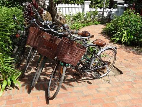 3-nagas-bikes-luang-prabang