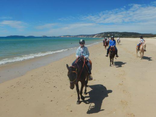 rainbow-beach-horse-ride-1