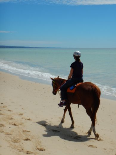 rainbow-beach-horse-ride-2