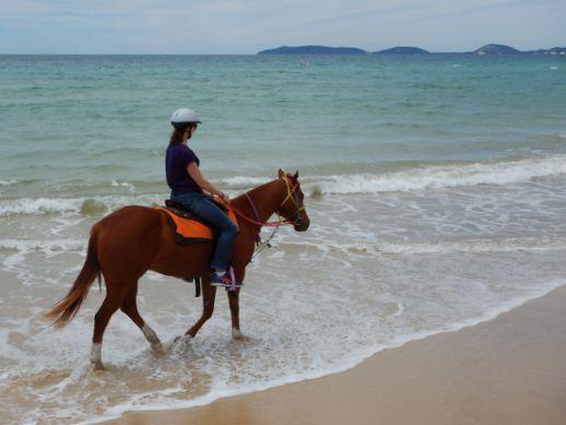 rainbow-beach-horse-ride-4