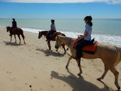 rainbow-beach-horse-ride-6